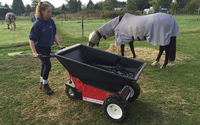 Utilizando la carretilla eléctrica MUV para bañar caballos en establos comerciales. El motor no genera ruidos para no asustar a los caballos